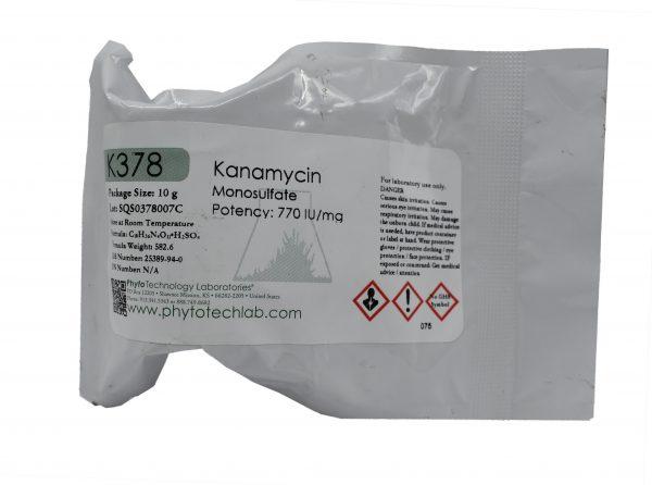 K378-kanamycin