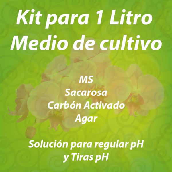 kit_orquideas