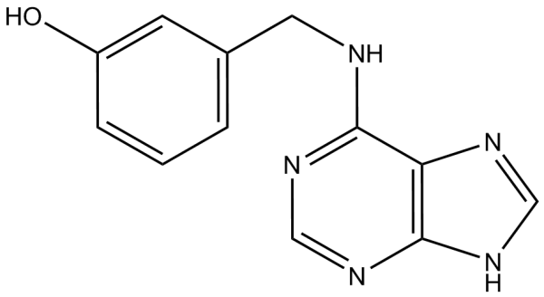Meta topolina solucion